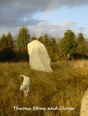 Throne Stone at Beech Stone Circle